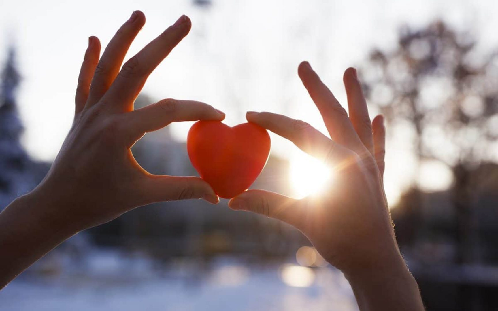 Woman holding heart-shaped red snowball, close-up of hands