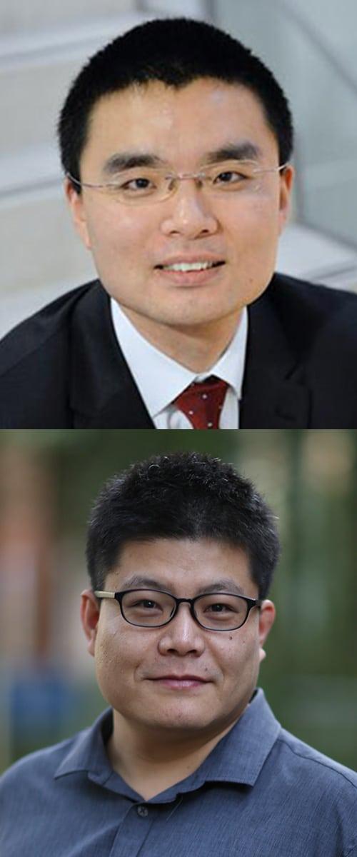 Tao Li and Baolian Wang