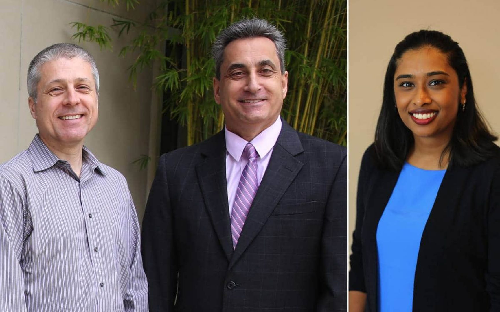Alan Cooke, Larry DiMatteo and Sonia Singh