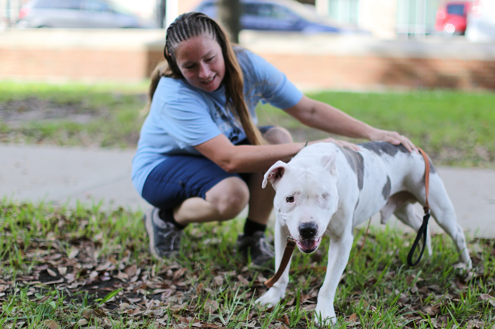Jill Davis kneels down to pet a white pit bull dog with one eye