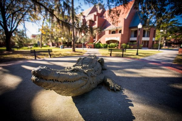Auditorium Park, gator, gator statue, statue, wide, close up