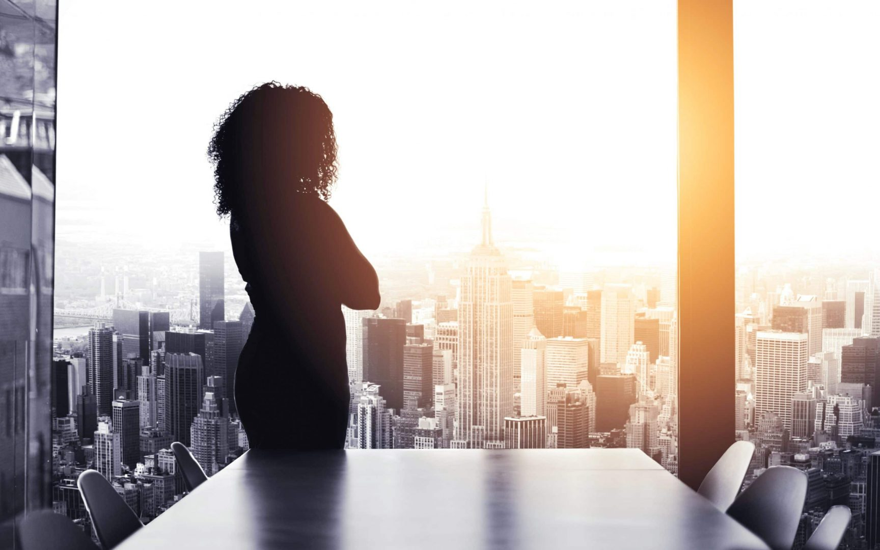 Silhouetted shot of a young businesswoman looking at a cityscape from an office window