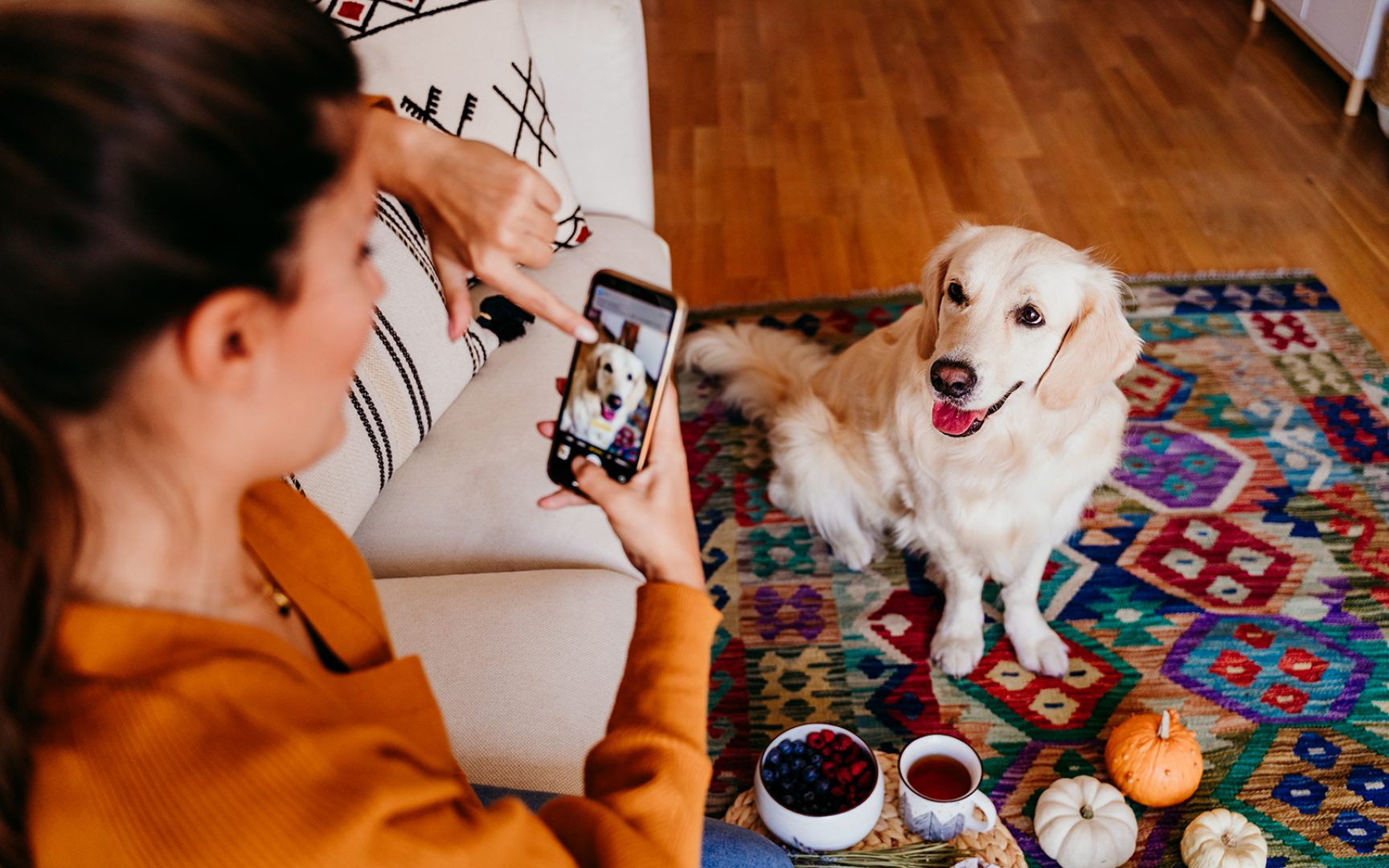 Young caucasian woman taking a picture of her golden retriever dog with mobile phone. Home, indoors.